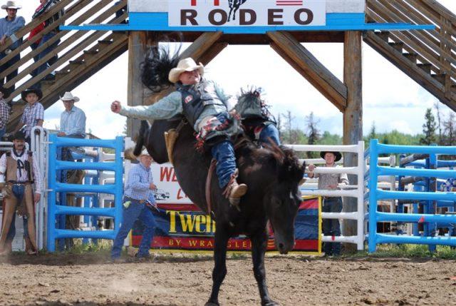 Castle Fuels Proud Sponsor Of The Prospect 2000 Cattle Show